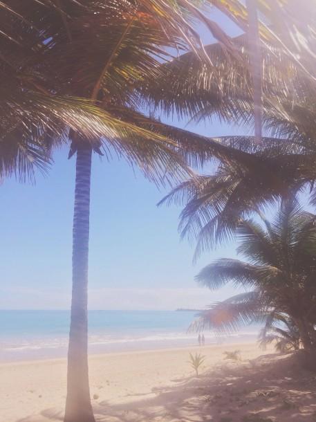 Paradise is Very Nice