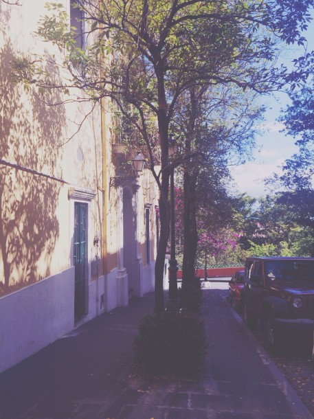 Sunlight Side Street, Viejo San Juan